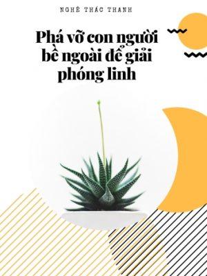 Pha_Vo_Con_Nguoi_Be_Ngoai